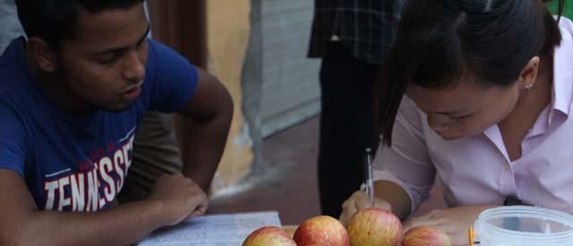 apples_n_bananas_0850b