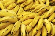 yellow_bananas_ficon